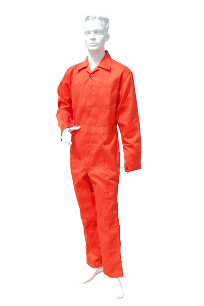 Nomex Work Coverall (317)